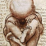 "Leonardo da Vinci: ""Views of a Foetus in the Womb."" Licensed under Public Domain via Wikimedia Commons"