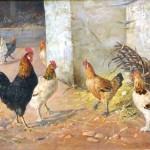 """Chickens! Google! Art!: """"O meu primeiro Ovo"""""""