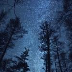 stars001thumb