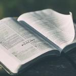 A Godless Walk Through the Bible