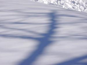 snow shadow by Rebecca Siegel on flirck