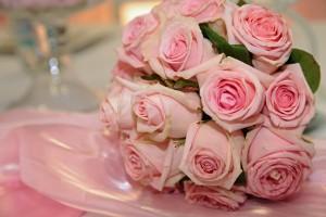 rose-1751742_1920