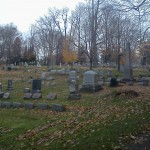 Walking the dog in the cemetery