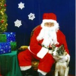 Bandit and Santa; Bandit ate some biscuits and knocked over the lights and Santa still filled his stocking!