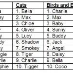 top pet names 2011