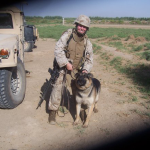Iraq War veteran Corporal Megan Leavey and Sgt. Rex (photo http://schumer.senate.gov)