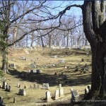 Mt. Hope Cemetery – and wildlife habitat