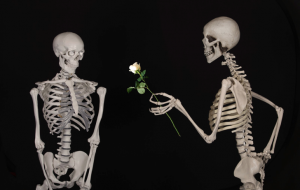 skeleton handing rose to another skeleton (pixabay)