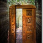 The yeses have it Image cool-door