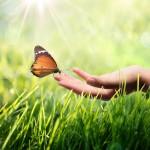God Vs Religion: Unadulterated Faith + Butterflies