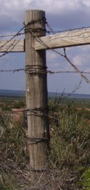 Barbedwire from Wikipedia