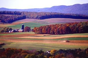 640px-Farming_near_Klingerstown,_Pennsylvania