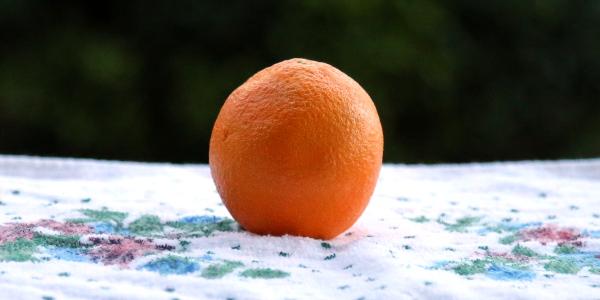 orange 600x300