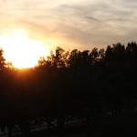 A Solstice Walk