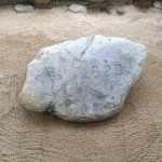 01 01 Plymouth Rock