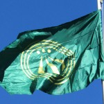 Awen Flag at ECG 2013