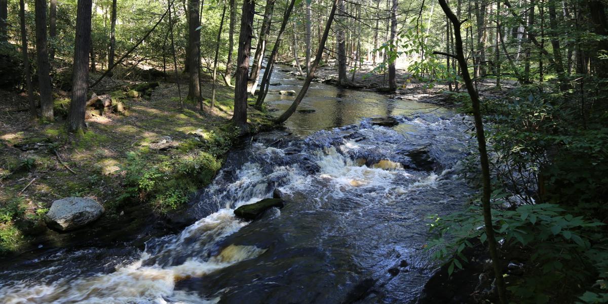 Bushkill Falls 2015 03 1200x600