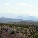 desert - Big Bend National Park - 2010