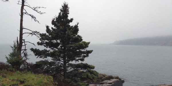 Acadia National Park – Maine – 2013