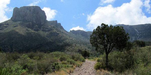 Big Bend National Park – Texas – 2010