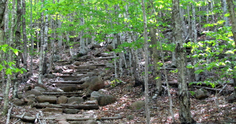 Bubble Rock Trail Steps 2013