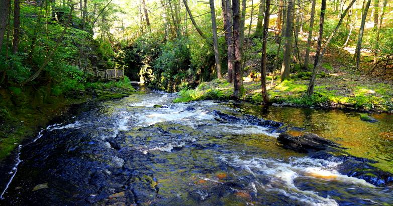 Bushkill Falls 2015 38
