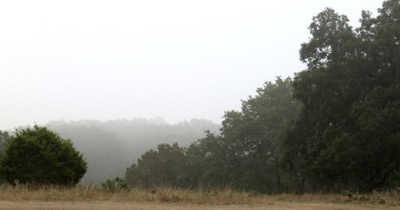 mists ADF Imbolc 2015