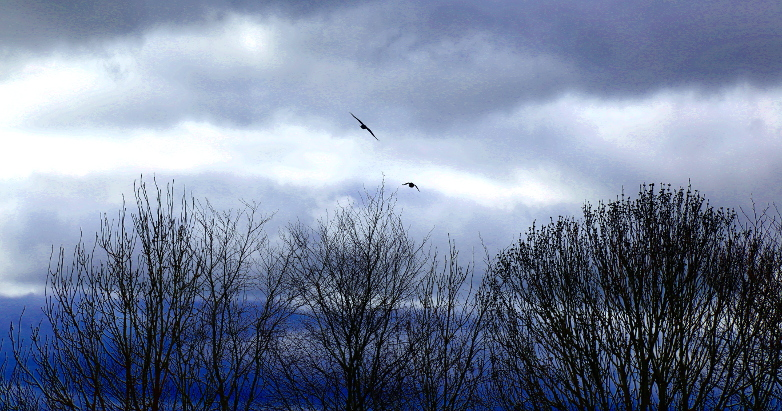 skies over Newgrange 2016