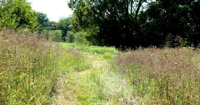 path through field 09.16.17