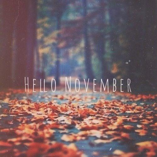 monday musings hello november chelsea patterson