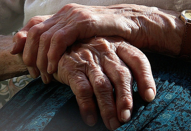 my granny s hands karen spears zacharias