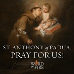 10 St. Anthony of Padua Things that Caught My Eye Today (June 13, 2016)