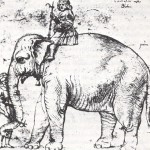 """HANNO, THE POPE'S """"WHITE ELEPHANT"""""""
