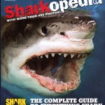 MY BOOKSHELF:  Sharks Are Scary! And Other Things Children Like to Think About