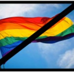 gay_rainbow_flag_creator_say_no_rainbow_flags_at_olympics_in_sochi_russia___o-blog-dee-o-blog-da-2-1