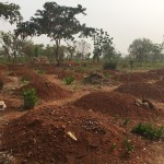 The Ghana Diaries: Conflict and Evacuation