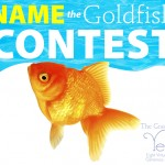 Yes! Your Goldfish Name Could Win $250 for Your Favorite Charity