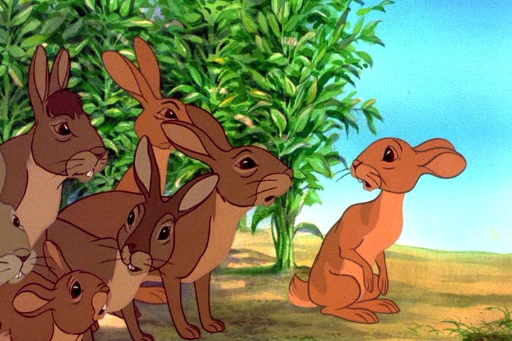 essay of comparison watership down Compare and contrast essay of watership down and the scarlet letter watership down: governmental systems in the novel watership down, there are many types of communities, and with those communities comes a different type of government.