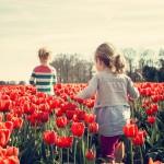 White Children in a Majority-Minority Future