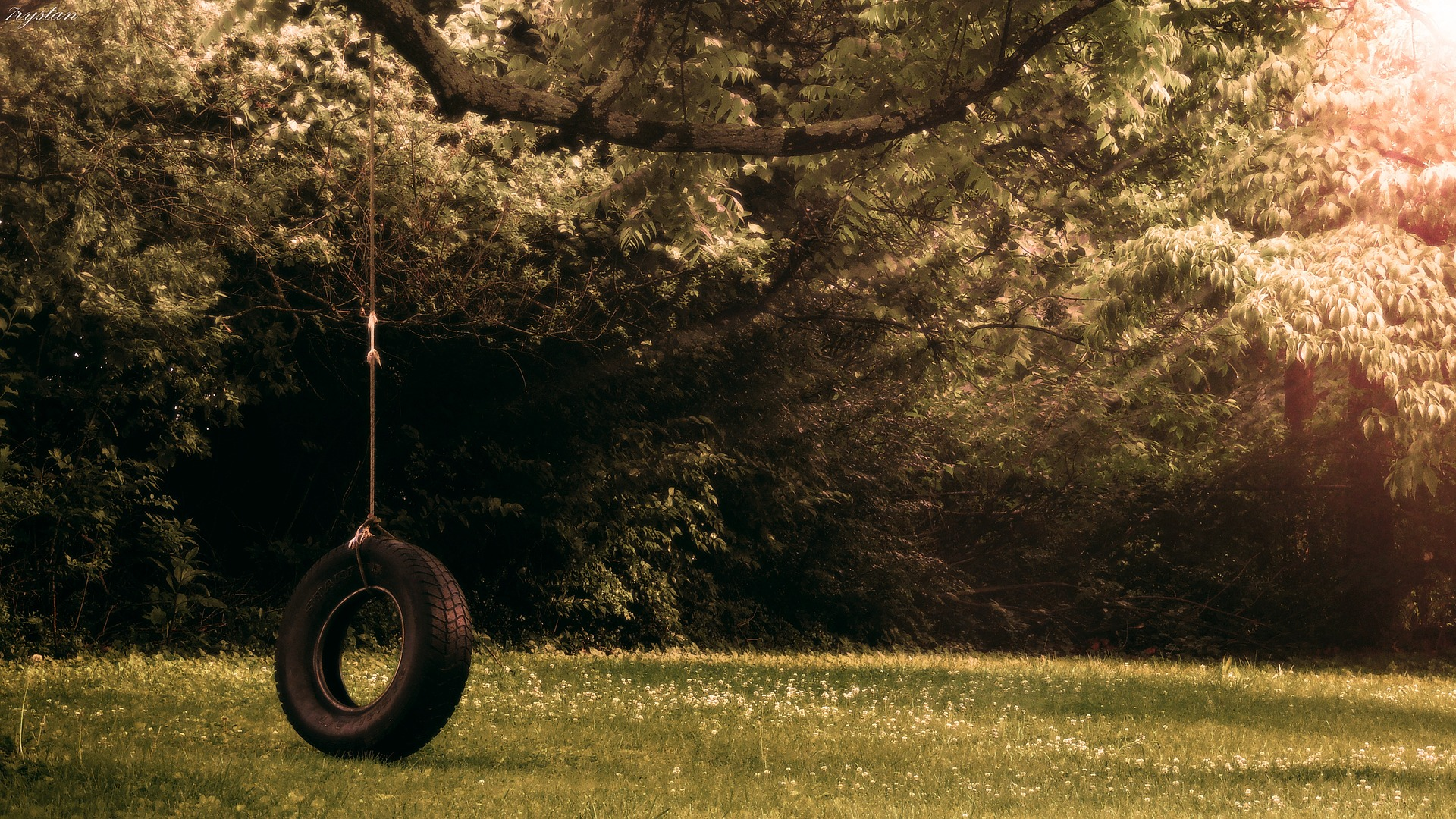 tireswing-2420483_1920