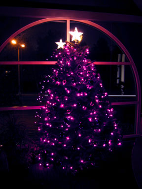 The Advent tree in the window of my office at Irvine Presbyterian Church