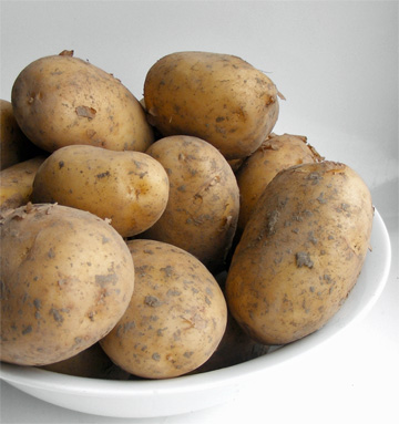 Oh no! Harvard Frowns on Eating Potatoes!