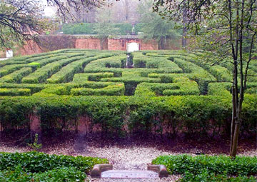 The maze outside of the Governor's Palace in Williamsburg, Virginia
