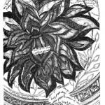 Lenten-Doodles-Day31-pic