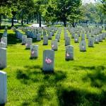 Memorial Day Gratitude