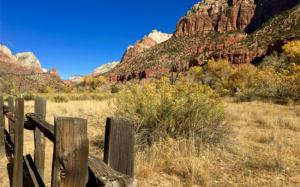 Zion Canyon, November 2017. Photo by Mark D. Roberts