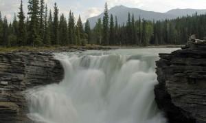 athabasca-falls-599391_1280