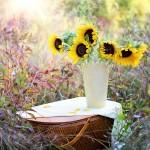 Gratitude: An Elixir for a Time of Sadness
