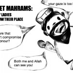 Please do not place pocket mahram in a haraam location, especially when batteries are in the device. This is to avoid forbidden sensations.