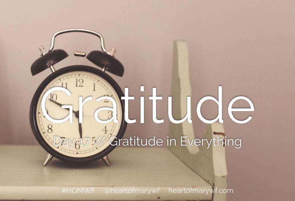 Gratitude in Everything